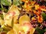 Florist-Course