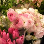 季節の花が並びました!